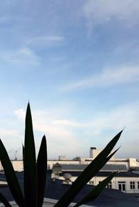 Utsikt ifrån kontoret