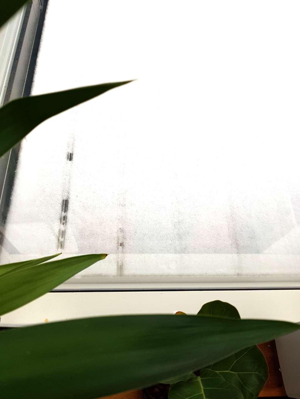 Blogginlägg: Helt plötsligt blev det en snöig lördag?