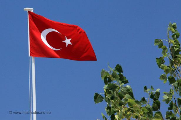 Vad säger en läkare i Turkiet om mjölkallergi, veteallergi och sojaallergi?