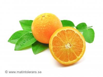 Citrusallergi – den sällsynta matallergin?